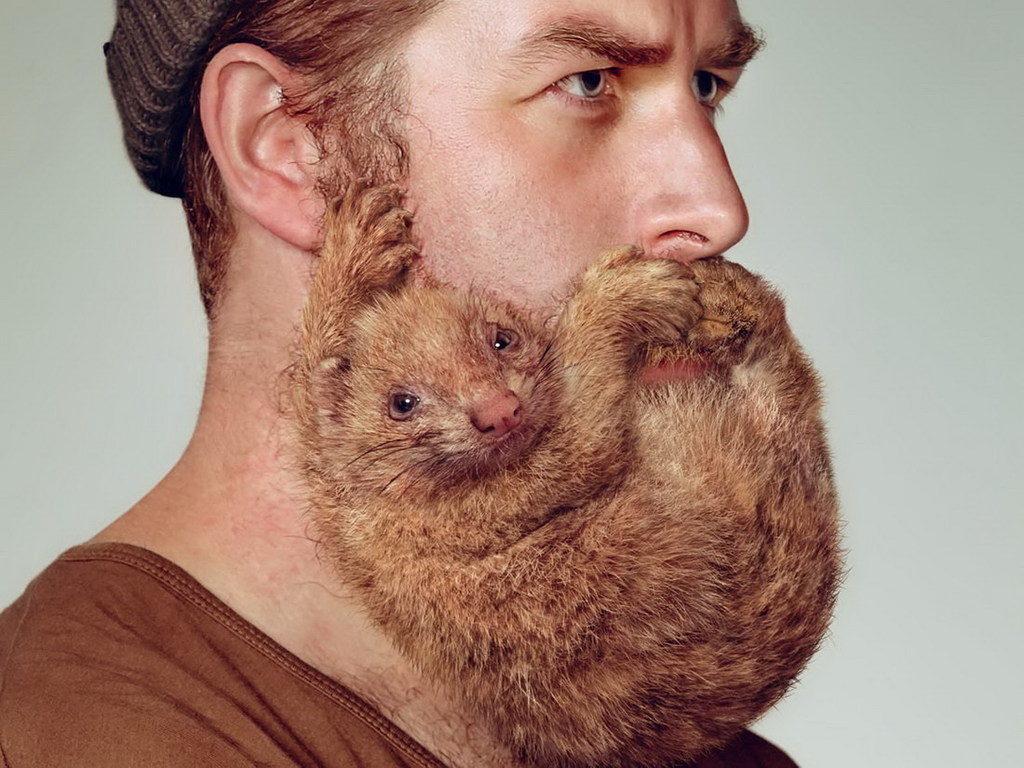 Основы бальзамов для бороды