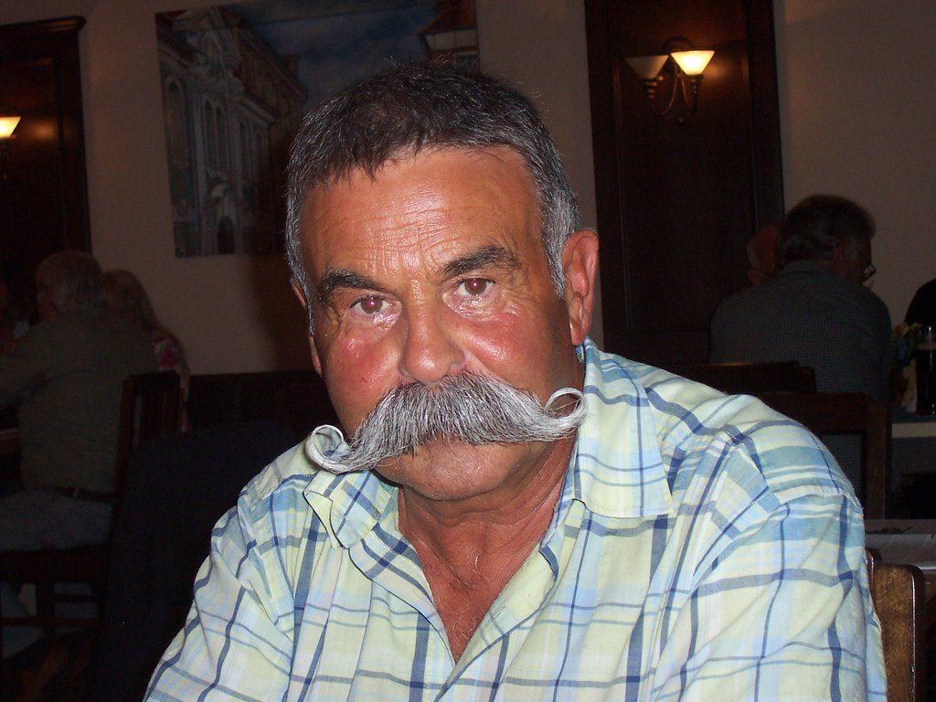 усы Венгерские