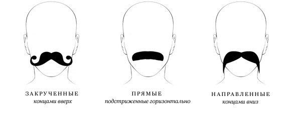 Виды стрижки усов
