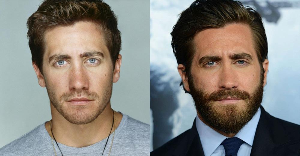 щетина или борода
