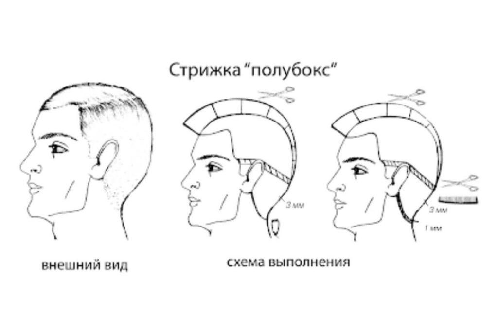 Схема выполнения стрижки Полубокс