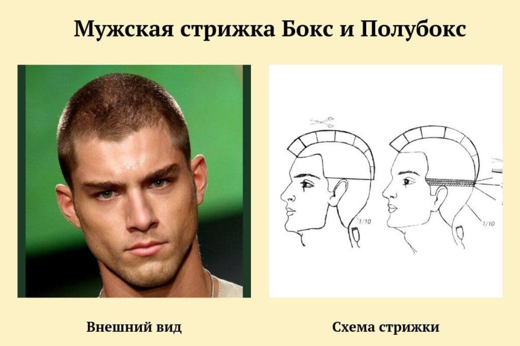схема стрижки Бокс-Полубокс
