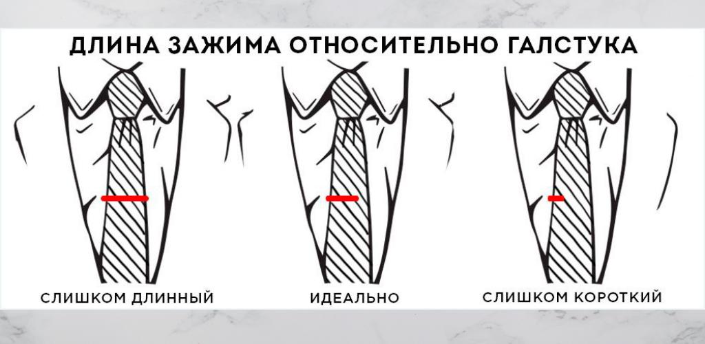Длина зажима относительно галстука